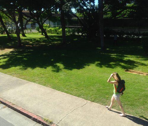 ハワイ 日本 違い 子ども