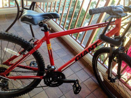 ハワイ 日本 違い 自転車
